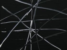 Going Wild I. (2008) | Acryl on Canvas | 60 x 40 cm